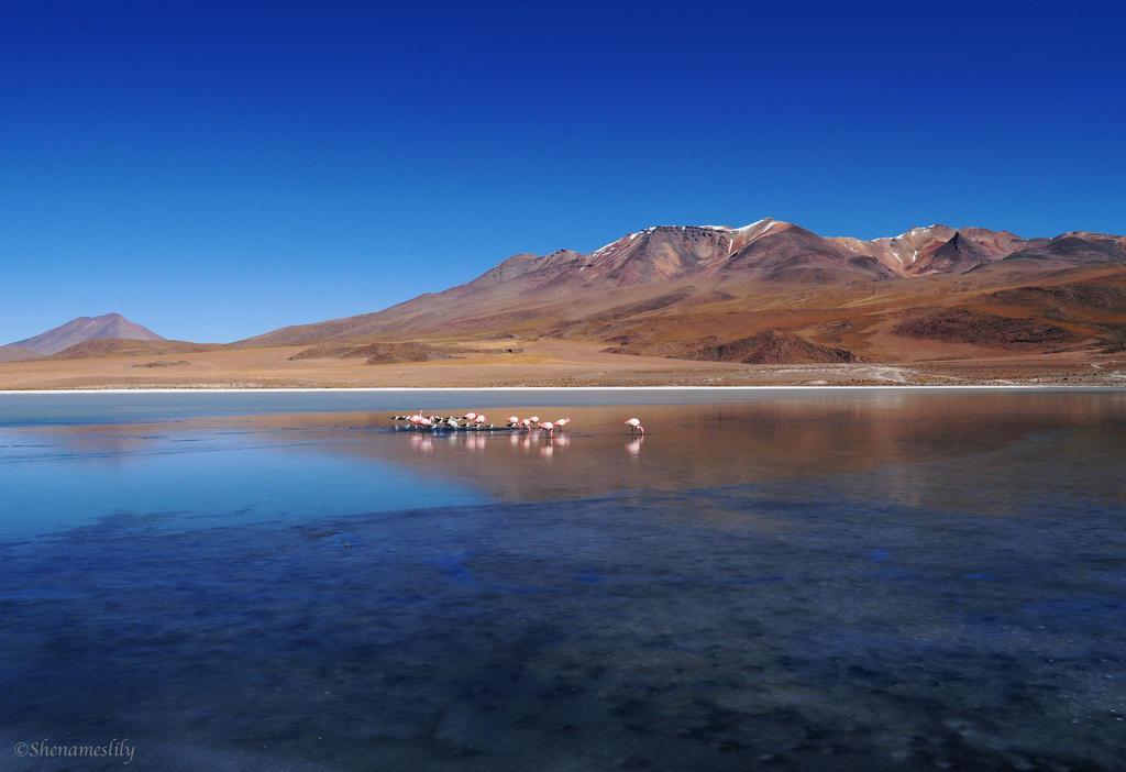 Salar d'Uyuni 2 by SheNamesLily