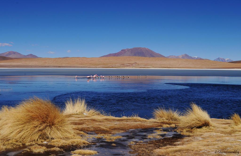 Salar d'Uyuni 3 by SheNamesLily