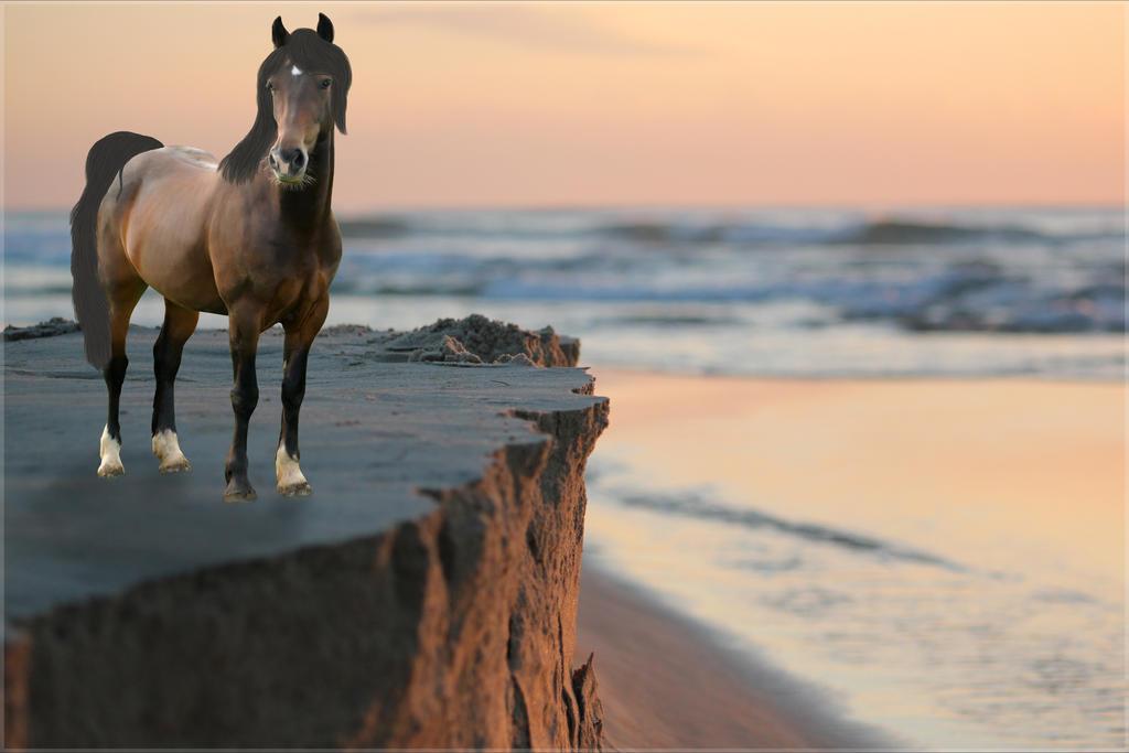Sunday's Beach by dragon2413