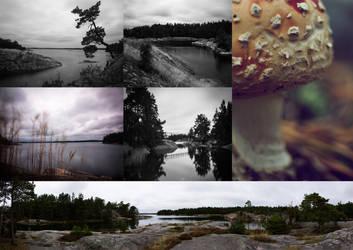 Swedish Archipelago by Thelemiic
