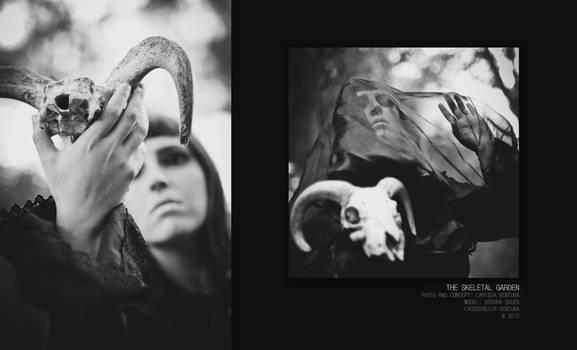 The Skeletal Garden II, 2015