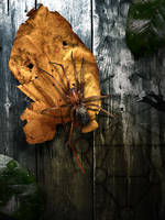 TCN - Parasite by thiscatharticnail