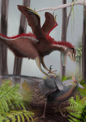 Dromaeosaurus indet.