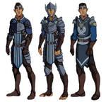 Warden Commander Mahariel