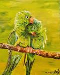 Parrots by NikoletaPopova