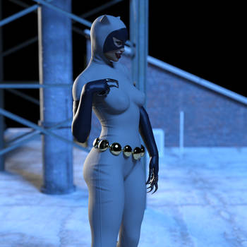 Catwoman - Animated Series Costume
