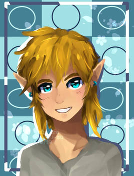 LOZ BOTW- Smile, Link!