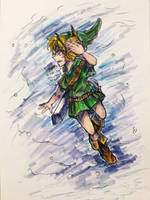 Young Hero (Hyrule Warriors! Young Link)