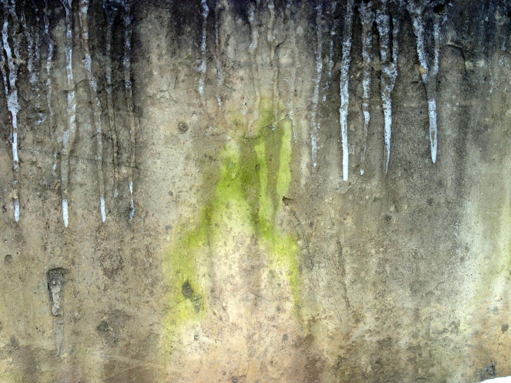 Free photo texture mossy frozen concrete wall 2 by for What happens to concrete if it freezes