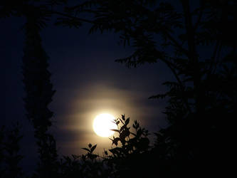 Moon by bagnaj97