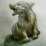 #24 Wolf Pup