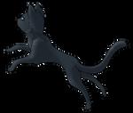 Adoptable - Grey Kitty - CLOSED by ThatKiku