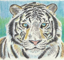 White Tiger 2 by X-Enlee-X
