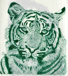 Tiger in Green by X-Enlee-X
