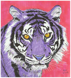 Purple Tiger by X-Enlee-X