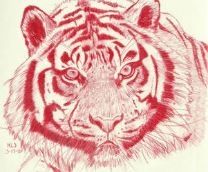 Tiger in Red by X-Enlee-X