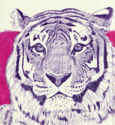 Tiger in Purple by Enlee-Jones