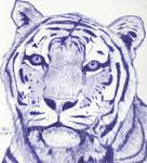 Tiger in Blue by Enlee-Jones