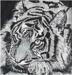 Tiger by Enlee-Jones