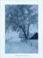 In frosty evening of January by Erni009