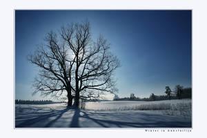Winter in Aukstaitija by Erni009