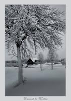 Descent ot Winter by Erni009