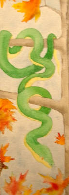Snake From Four Seasons