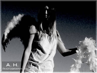 Snow Angel 3 by dark-angel-of-chaos
