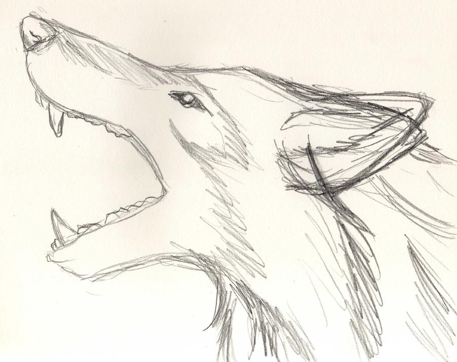 Il libro di incantesimi di moon for Disegni di lupi facili