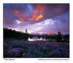 'Teton Summer'