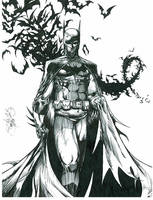 Batman by BryonicZomborg