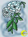 Angelrose - Karasu no shugo Tenshi - Birthday-Gift by Luna42