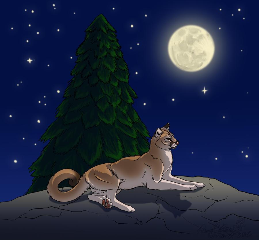 cougar moms