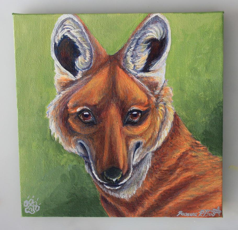 Maned Wolf #1 Chrysocyon brachyurus by Falcolf