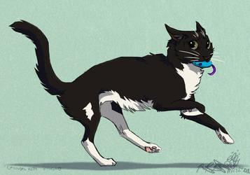 Carousal Kitty by Falcolf