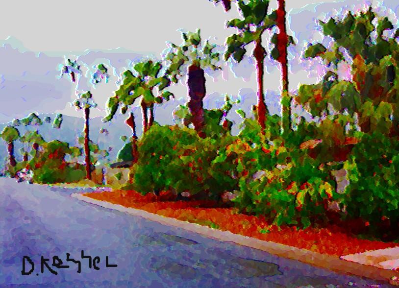 A street in Palm Springs, Ca.