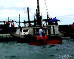 Ferry Boats in Fresh Wind