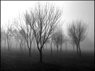 fog by B4ndAi