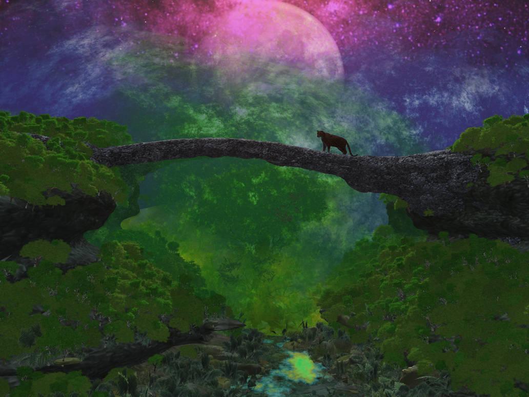 Stalking The Moon by koonak