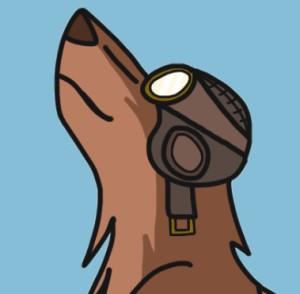 TheRisingAviator's Profile Picture