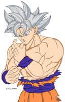 Goku Ultra Instinct by SultanSama1