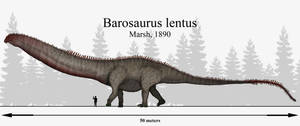 Titan of Titans: Barosaurus lentus by Paleonerd01