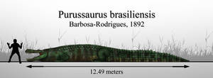 The Giant Caiman: Purussaurus brasiliensis