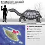 Denham's Thunder Turtle