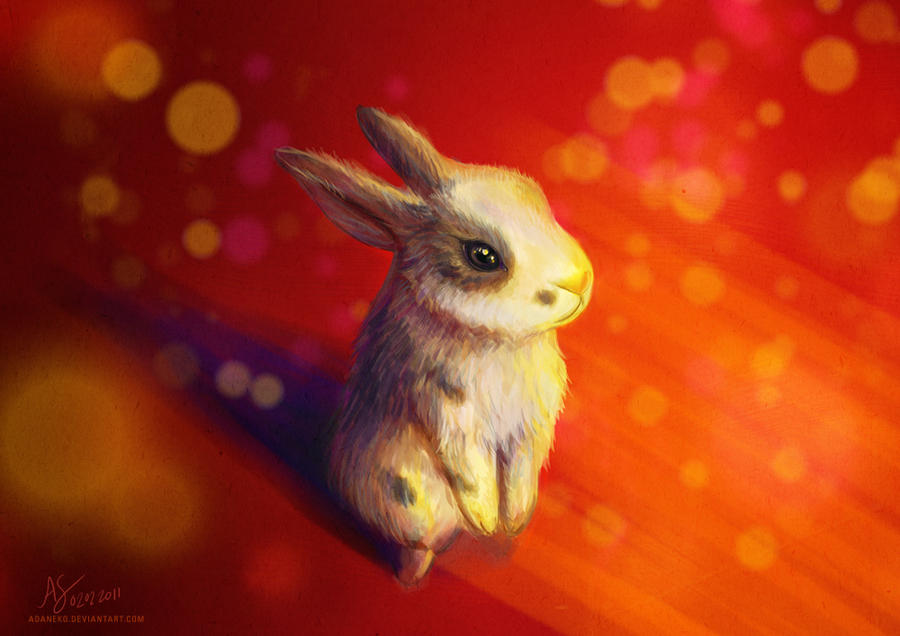 Year of the Rabbit by adaneko