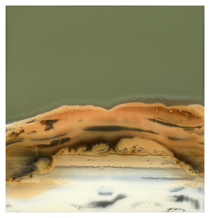 accidental landscape by analogphoto