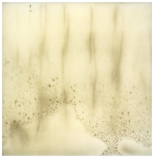 entropy by analogphoto