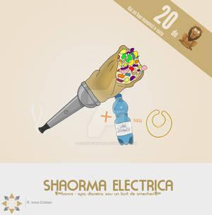 Shaorma Electrica