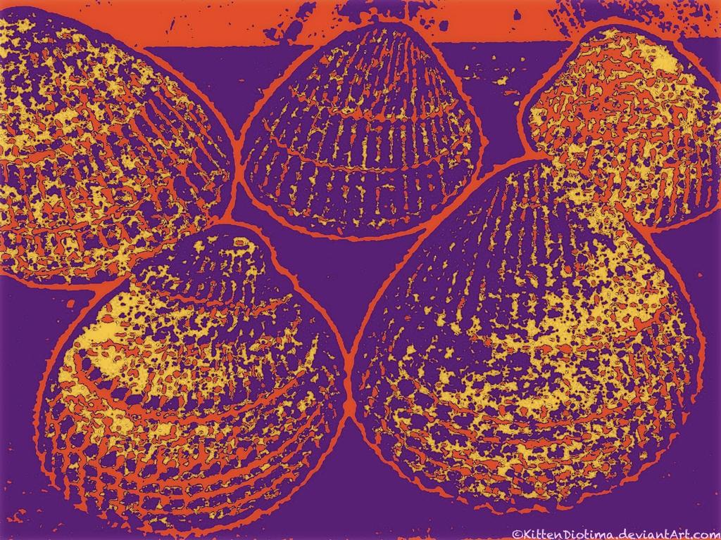 Pop Shells II by KittenDiotima
