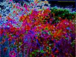 Candyland NightLife by KittenDiotima